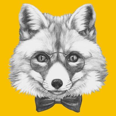 Fototapet Handritad porträtt av Fox med glasögon. Vector isolerade element.