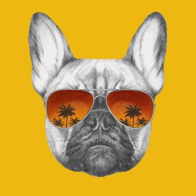 Fototapet Handritad porträtt av Fransk bulldogg med spegel solglasögon. Vector isolerade element.