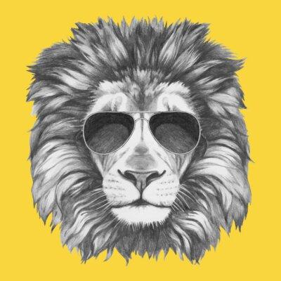 Fototapet Handritad porträtt av Lion med solglasögon. Vector isolerade element.