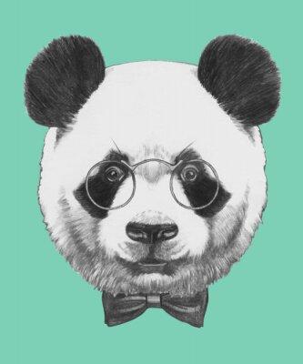 Fototapet Handritad porträtt av Panda med glasögon och fluga. Vector isolerade element.