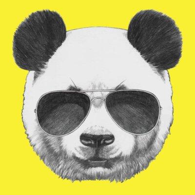 Fototapet Handritad porträtt av Panda med solglasögon. Vector isolerade element.