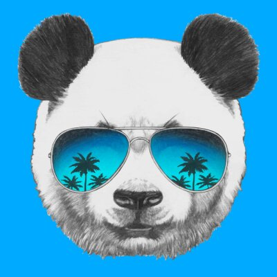Fototapet Handritad porträtt av Panda med spegel solglasögon. Vektor isolerade element