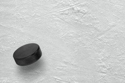 Fototapet Hockey puck på is