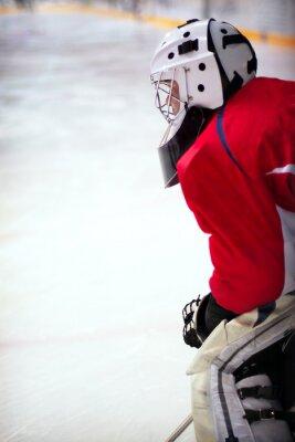 Fototapet hockeygoalie