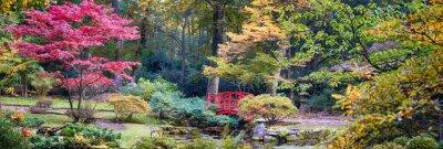 Fototapet höst på japanska park, panorama