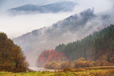 Fototapet Höstregn och dimma i bergen. Färgglada höstskogbakgrund