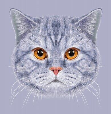 Fototapet Illustration av stående brittisk kort hår katt. Söt grå tabby Huskatt med orange ögon.