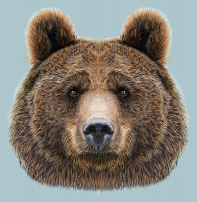 Fototapet Illustrerad Porträtt av Bear på blå bakgrund