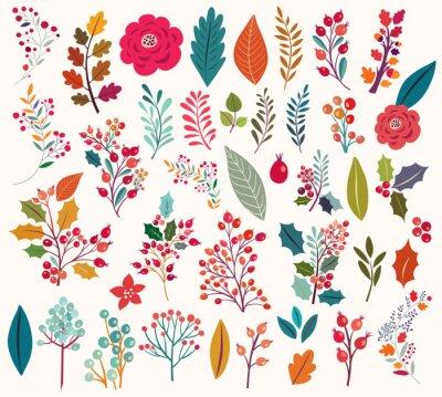 Fototapet Insamling av blommor och blad