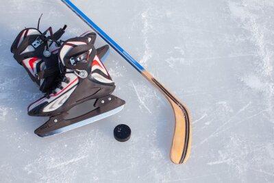 Fototapet Ishockey.