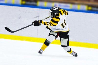 Fototapet Ishockeyspelare - slagskott