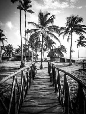 Fototapet Island Life