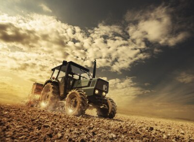 Fototapet Jordbrukare i fälten kör en traktor
