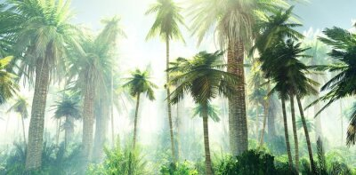 Fototapet Jungle in the fog, palm trees in the morning in the haze, rays of light in the palm trees, 3D rendering