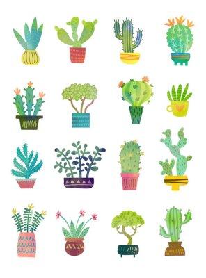 Fototapet kaktus vattenfärg affisch