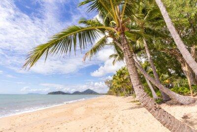 Fototapet Karibiska stranden