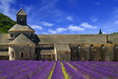Fototapet Klostret Senanque och blommande rader lavendel. Gordes, Lu
