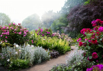 Fototapet Konstblommor på morgonen i en engelsk park