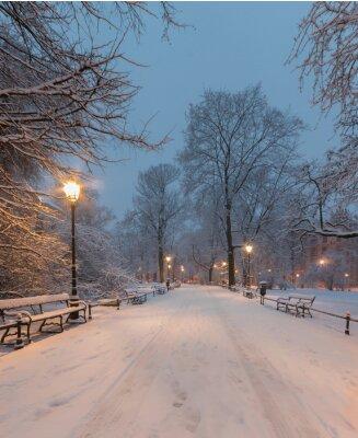 Fototapet Krakow, Polen, gränd i parken Planty sett på morgonen under snön.