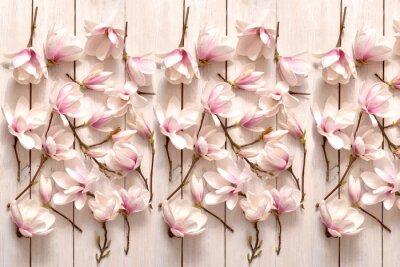Fototapet kwiat magnolii, kwiat, roślina, biała, beuty, galąź, drzewo magnolii, kwiatowy, fiolet, kwitnienie, flora, botanika, ornament z magnolii, kompozycja magnolii, układ kwiatów magnolii, pąki magnolii, fl