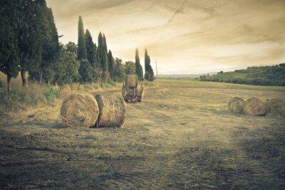 Fototapet landsbygden