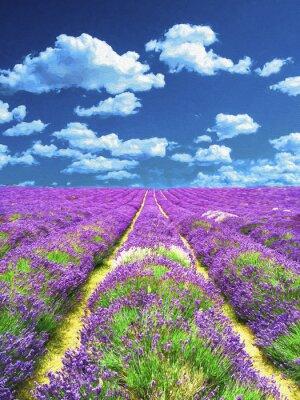 Fototapet Lavendel fält. Oljemålning.