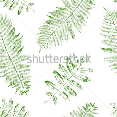 Fototapet Leaves of mountain ash and fern. Seamless pattern with leaf prints. Vector illustration.