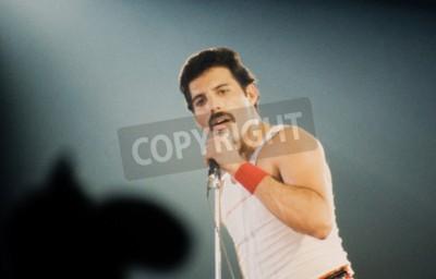 Fototapet Leiden, Nederländerna - NOV 27, 1980: Freddy Mercury sångare i brittiska bandet drottningen under en konsert i Groenoordhallen i Leiden i Nederländerna