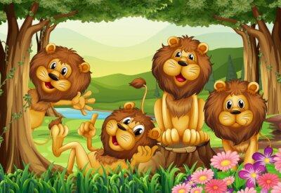 Fototapet Lion bor i djungeln