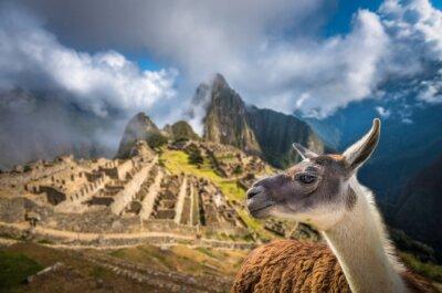 Fototapet Machu Picchu, UNESCO: s världsarv. En av New Seven W