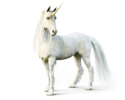 Fototapet Majestätisk enhörning poserar på en vit isolerad bakgrund. 3d rendering