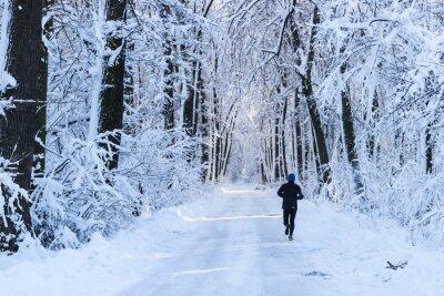 Fototapet Man kör i skogen på vintern