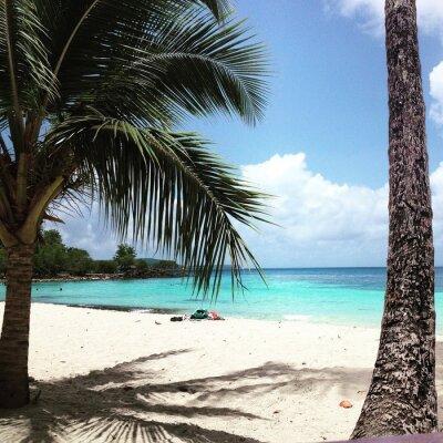 Fototapet Martinique