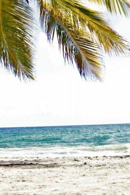 Fototapet Mer, Antiller, Caraibes, Tropiques ...