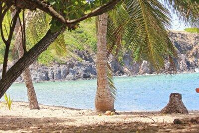 Fototapet Mer, Antiller, Karibier, Tropiyer ...