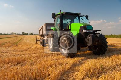 Fototapet Modern grön traktor på jordbruksområdet under skörd på solig sommardag