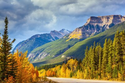 Fototapet Motorväg i Banff