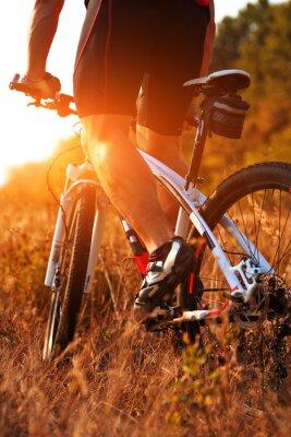 Fototapet Närbild bakifrån av konst spining cykel pedaler