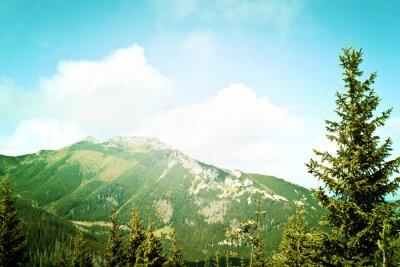 Fototapet Naturen i bergen.