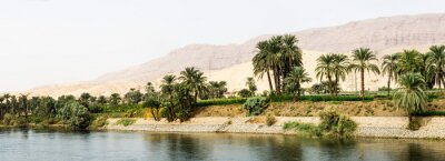 Fototapet Nile shore i naturen