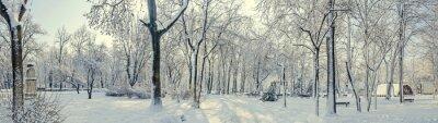 Fototapet Offentlig park från Europa med träd och grenar täckta med snö och is, bänkar, lyktstolpe, landskap.