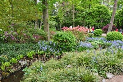 Fototapet ogród