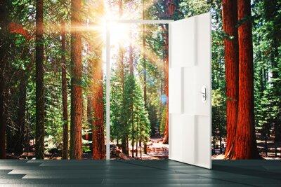 Fototapet Öppna dörren till den soliga skogen konceptet