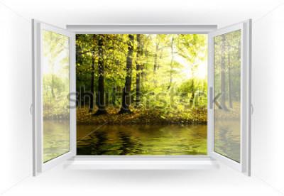 Fototapet Öppna fönster med skog på en bakgrund