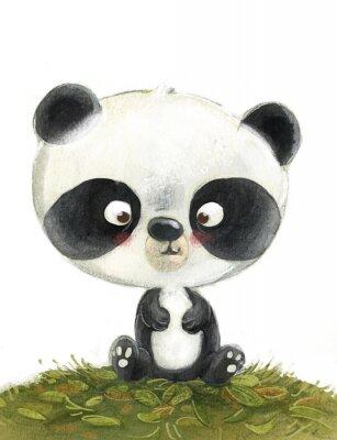 Fototapet oso panda pequeño