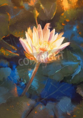 Fototapet painting of beatiful yellow lotus blossom,single waterlily flower blooming on pond