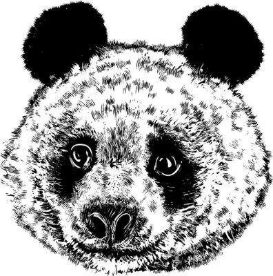 Fototapet Panda 01