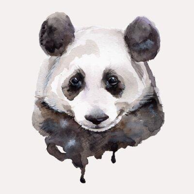 Fototapet Panda.Watercolor illustration Vektor