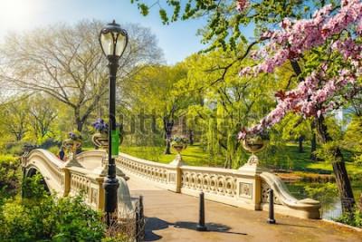 Fototapet Pilbåge i Central Park på solig vårdag, New York City