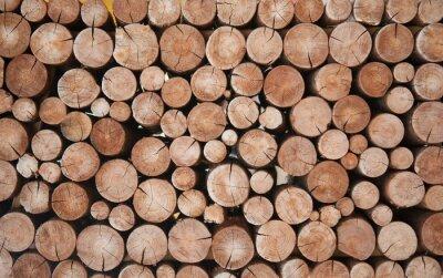 Fototapet Pile of wood logs stumps for winter